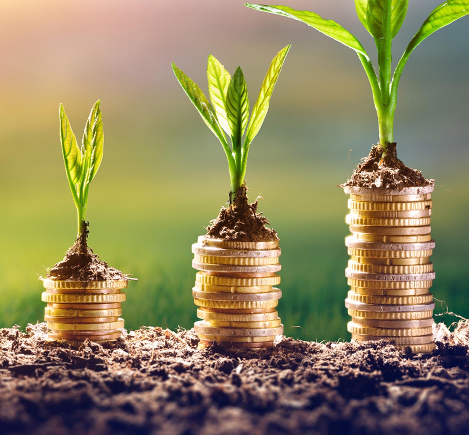 Referenzstory Miriam J. Hohenfeldt – Branche: Finanzbranche, Kapitalanlagen